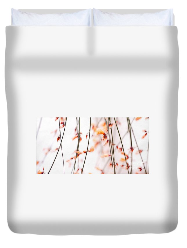 Whin Duvet Cover featuring the photograph Curtain by Priska Wettstein