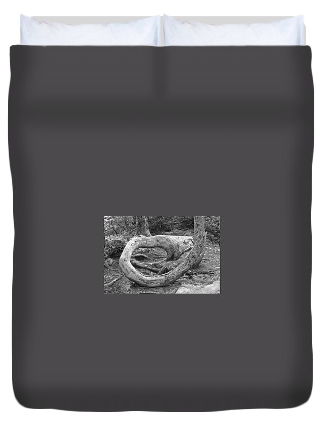 Wood Duvet Cover featuring the photograph Curved by David Rucker