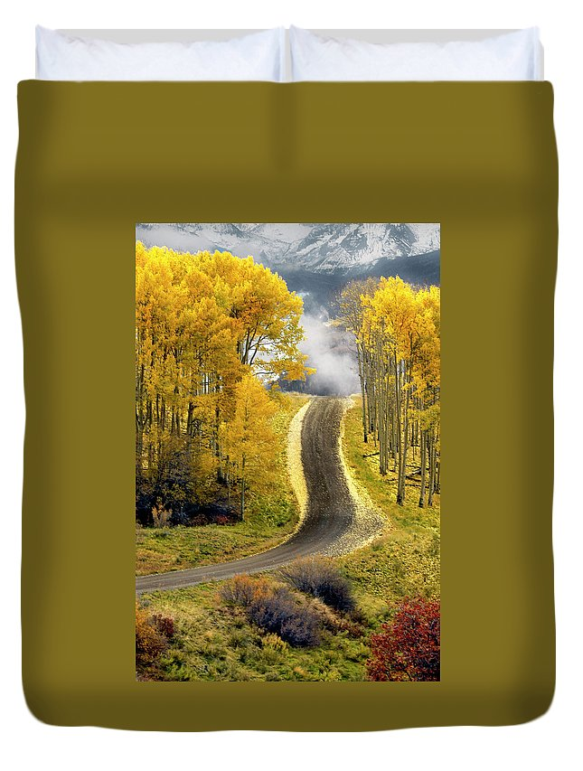 Aspens Duvet Cover featuring the photograph Cutting Through The Aspens by Dave Mills
