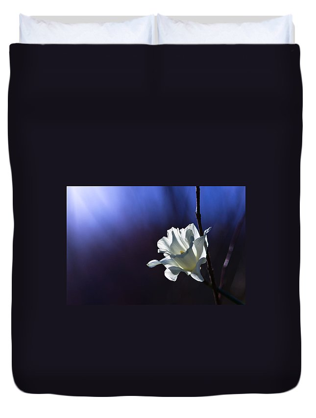 Spring Duvet Cover featuring the photograph Daffodil Light by Lori Coleman