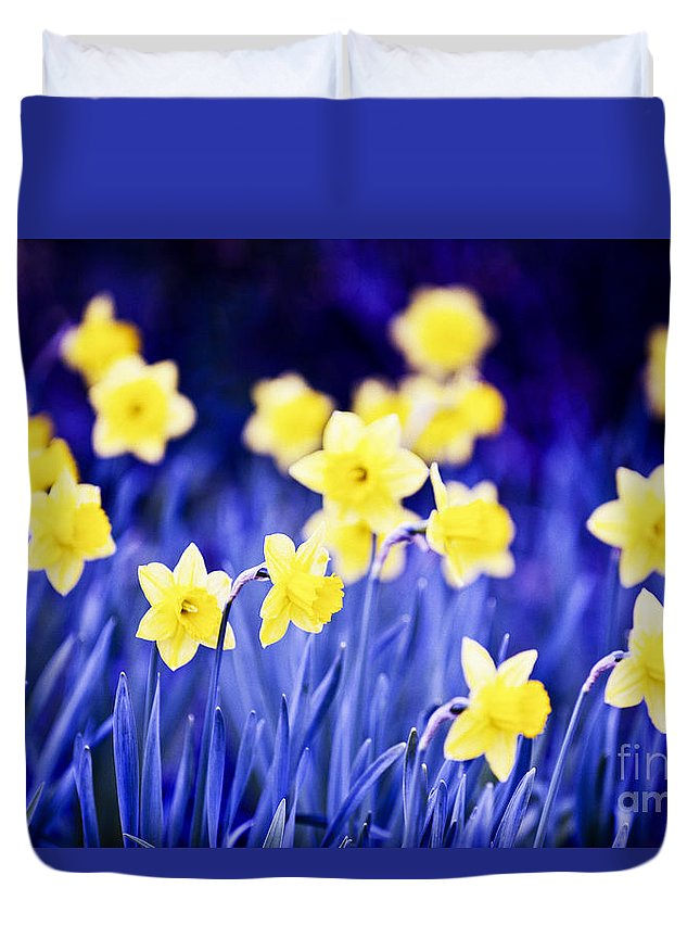 Flower Duvet Cover featuring the photograph Daffodils Flowers by Elena Elisseeva