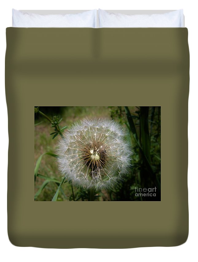 Dandelion Duvet Cover featuring the photograph Dandelion Going To Seed by Sherman Perry