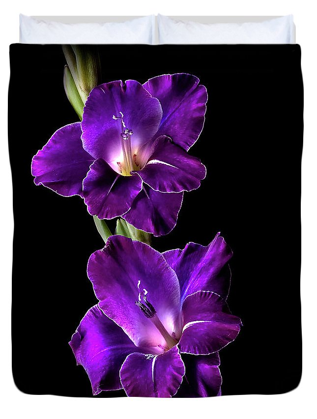 Flower Duvet Cover featuring the photograph Dark Gladiolas by Endre Balogh