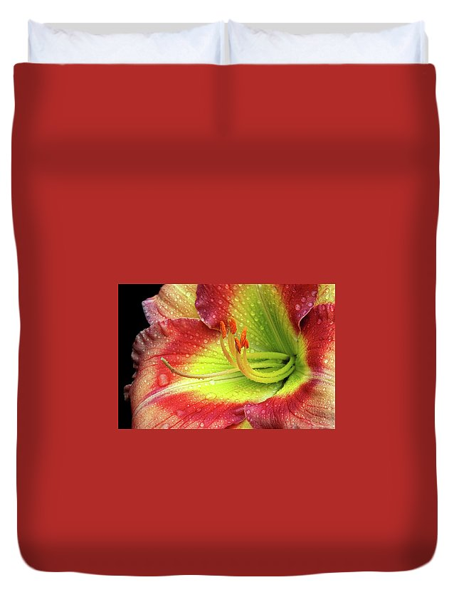 Daylily Duvet Cover featuring the photograph Daylily by Dave Mills