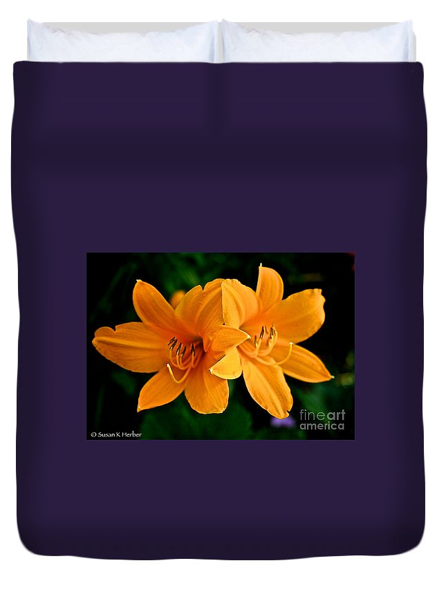 Plant Duvet Cover featuring the photograph Daylily Duo by Susan Herber