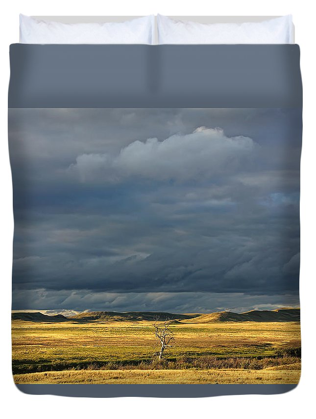 Light Duvet Cover featuring the photograph Dead Tree At Dusk With Storm Clouds by Robert Postma