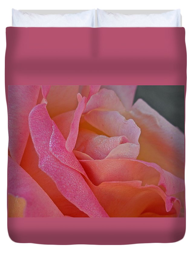 Flowers Duvet Cover featuring the photograph December Rose by Diana Hatcher