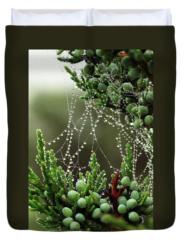 Web Duvet Cover featuring the photograph Decorated Bush Quogue Wildlife Preserve by Rick Berk