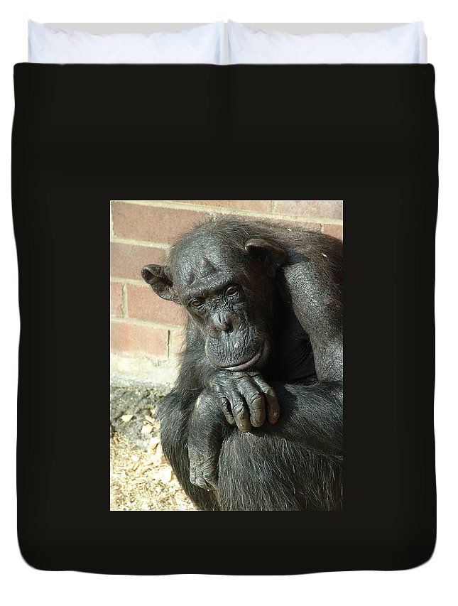 Gorilla Duvet Cover featuring the photograph Gorilla Deep Thoughts by Ian Mcadie