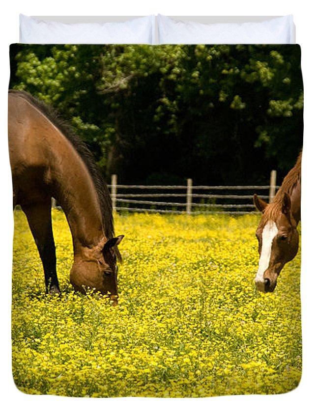 Horse Duvet Cover featuring the photograph Delaware Dandilions by Trish Tritz