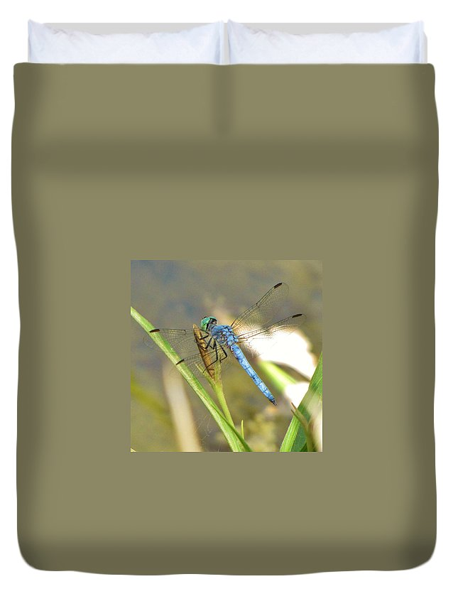Dragonfly Duvet Cover featuring the photograph Delicate Dragonfly by Michelle Cassella