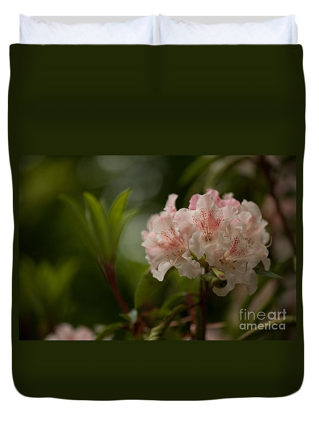 Rhodies Duvet Cover featuring the photograph Delicately Peach by Mike Reid