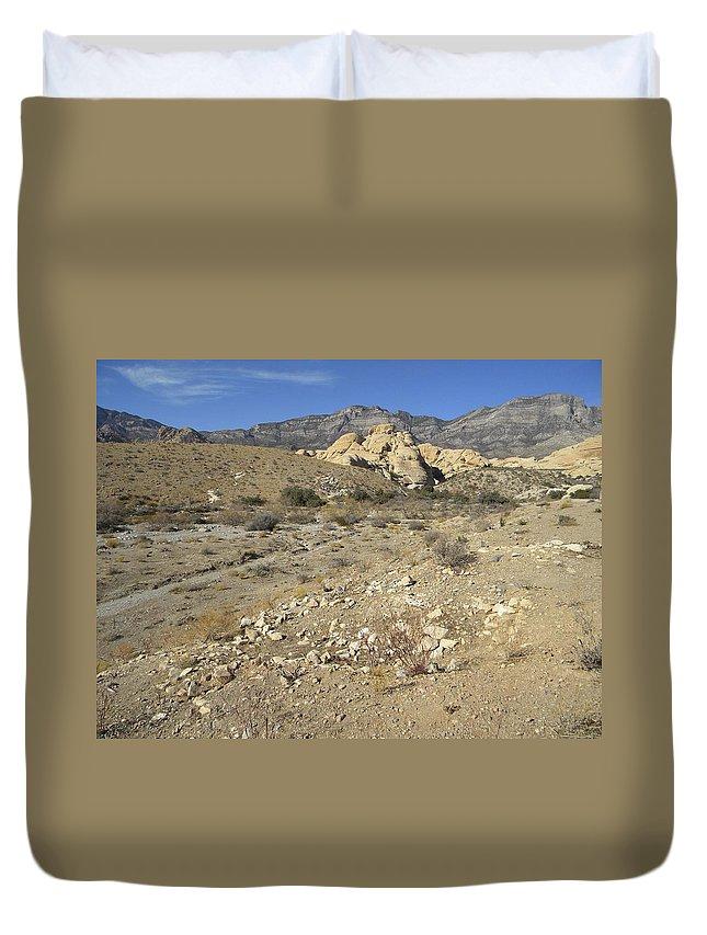 Desert Duvet Cover featuring the photograph Desert Washout by Frank Wilson