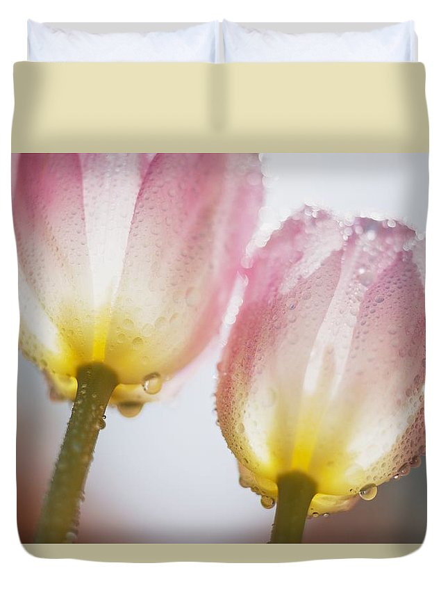 Tulipa Duvet Cover featuring the photograph Dew On Tulips by Craig Tuttle