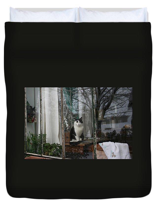 Tuxido Cat Duvet Cover featuring the photograph Dietro Ai Vetri by Tila Gun