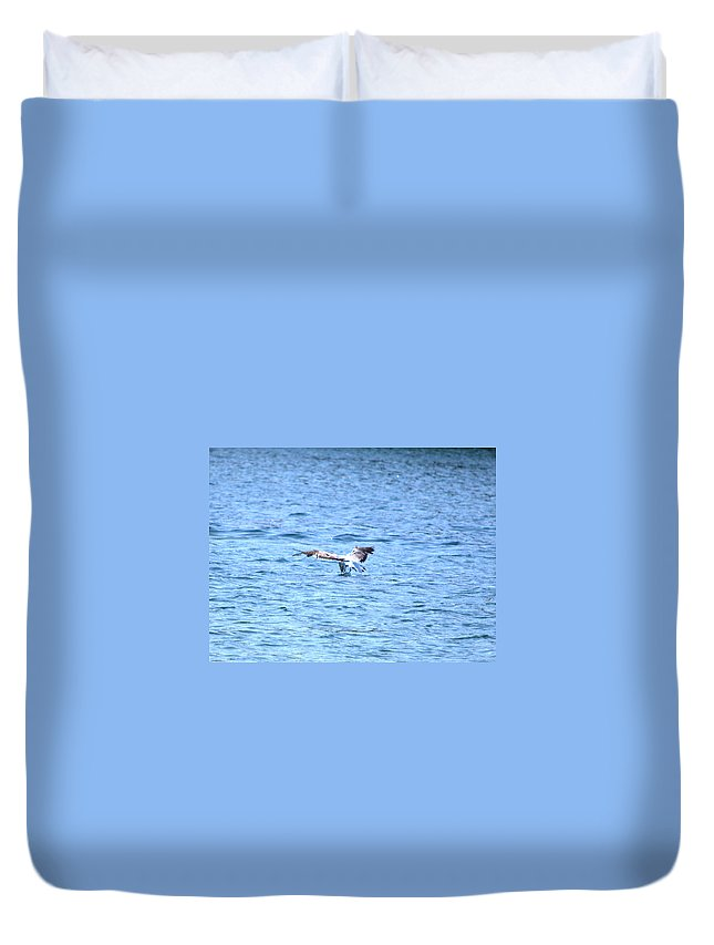 Seagull Duvet Cover featuring the photograph Dive by Kari Tedrick