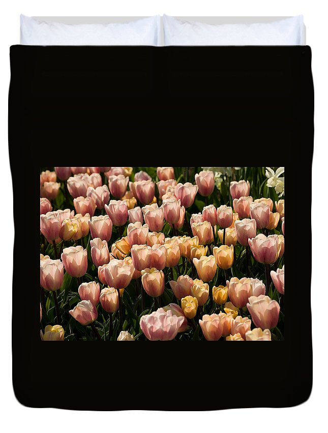 Tulip Duvet Cover featuring the photograph Dominoes by Trish Tritz