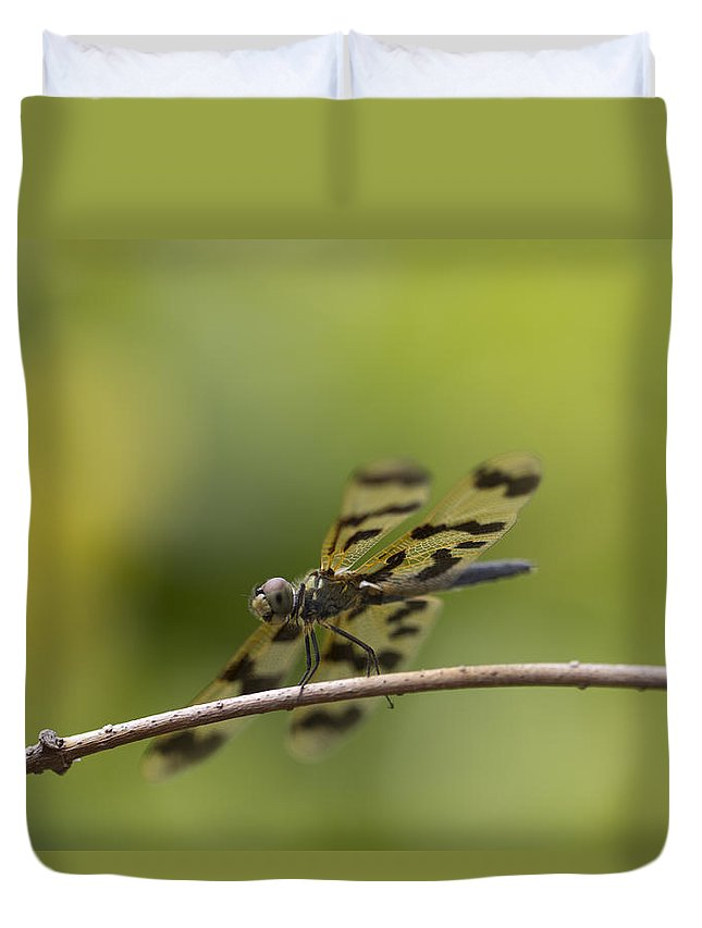 Dragonfly Duvet Cover featuring the photograph Double Decker by Douglas Barnard
