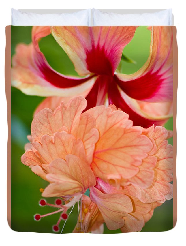 Hibiscus Duvet Cover featuring the photograph Double Hibiscus by Roger Mullenhour