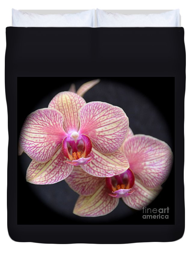 Orchids Duvet Cover featuring the photograph Double Trouble by Debbi Granruth