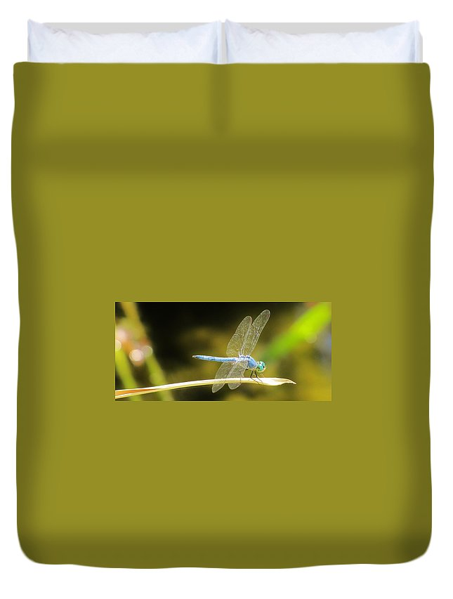 Dragonfly Photo Duvet Cover featuring the photograph Dragonfly by Michelle Cassella