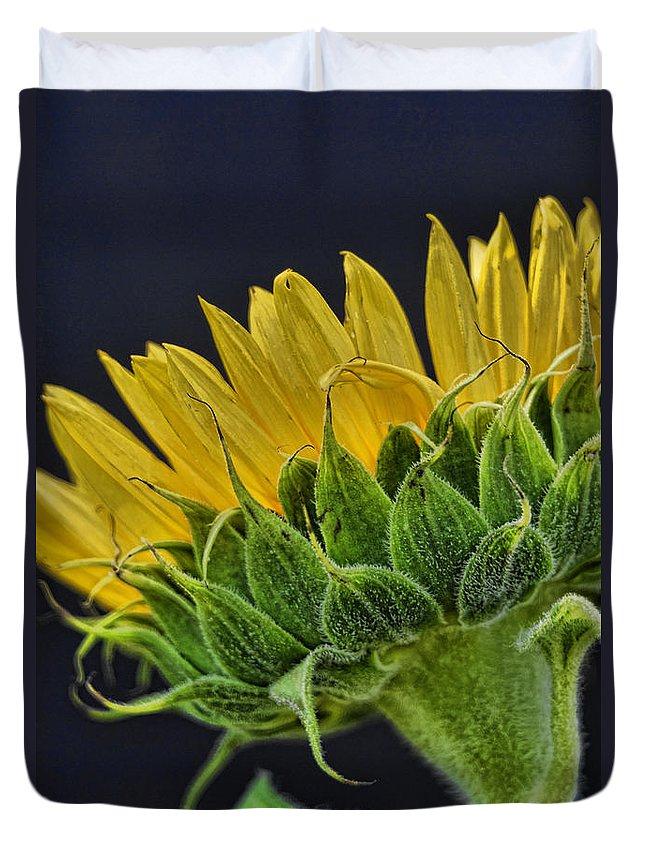 Sunflower Duvet Cover featuring the photograph Drama by Saija Lehtonen
