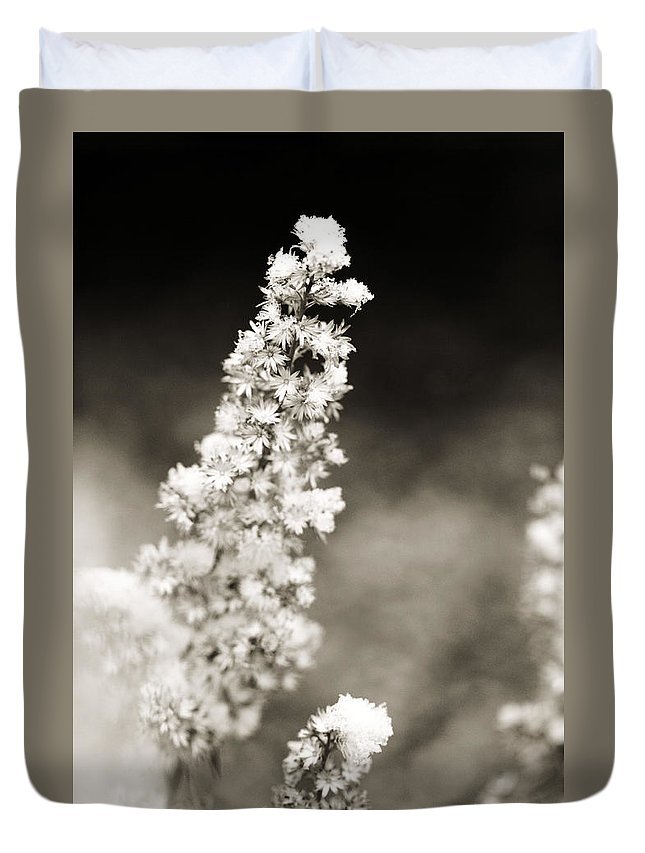 Dried Duvet Cover featuring the photograph Dried Flower And Crystals 2 by Marilyn Hunt