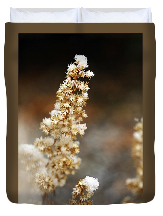 Dried Duvet Cover featuring the photograph Dried Flower And Crystals by Marilyn Hunt