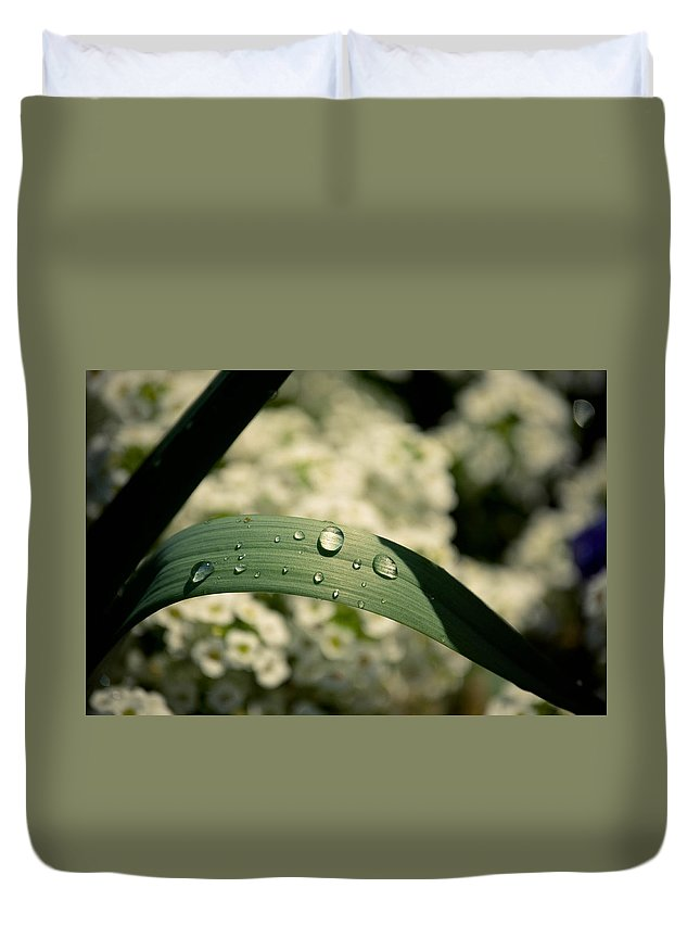 Leaves Duvet Cover featuring the photograph Droplets by Trish Tritz