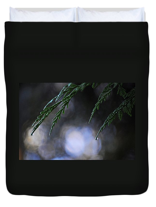 Water Duvet Cover featuring the photograph Drops In The Forest by Tikvah's Hope