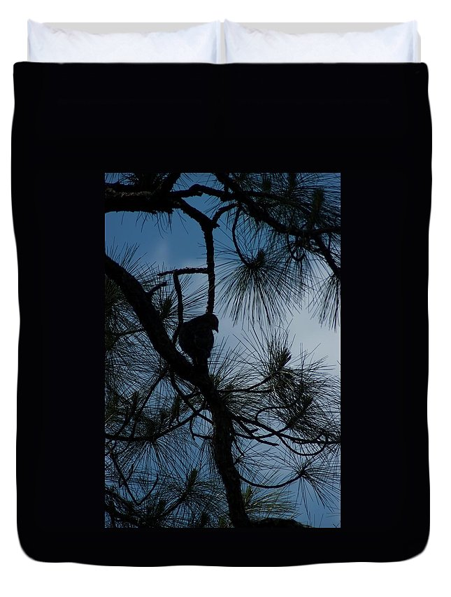 Florida Duvet Cover featuring the photograph Dusk by Joseph Yarbrough