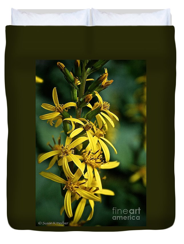 Outdoors Duvet Cover featuring the photograph Dwarf Golden Ray by Susan Herber
