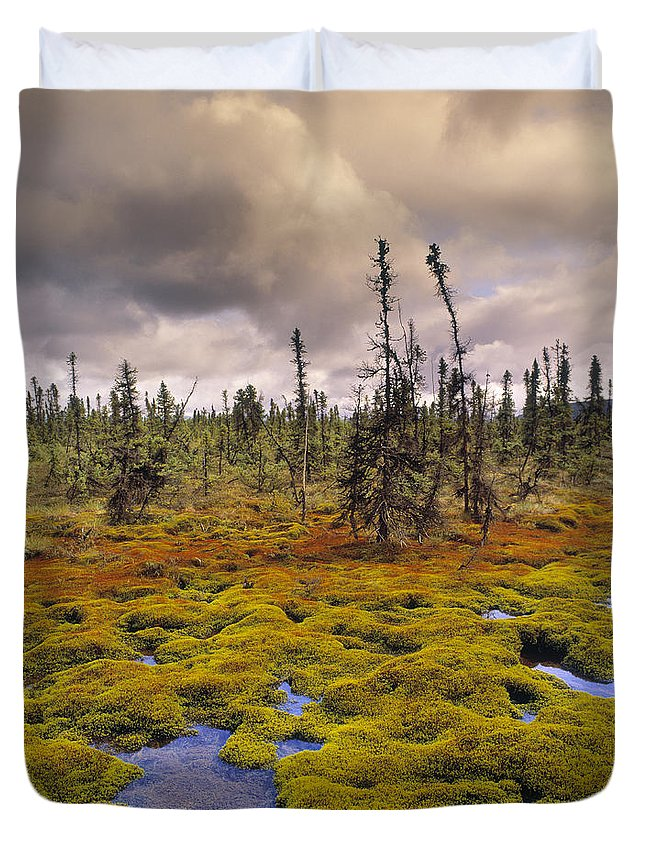 Light Duvet Cover featuring the photograph Eagle Plains, Yukon Territory, Canada by Darwin Wiggett