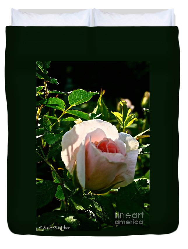 Plant Duvet Cover featuring the photograph Early Rose by Susan Herber