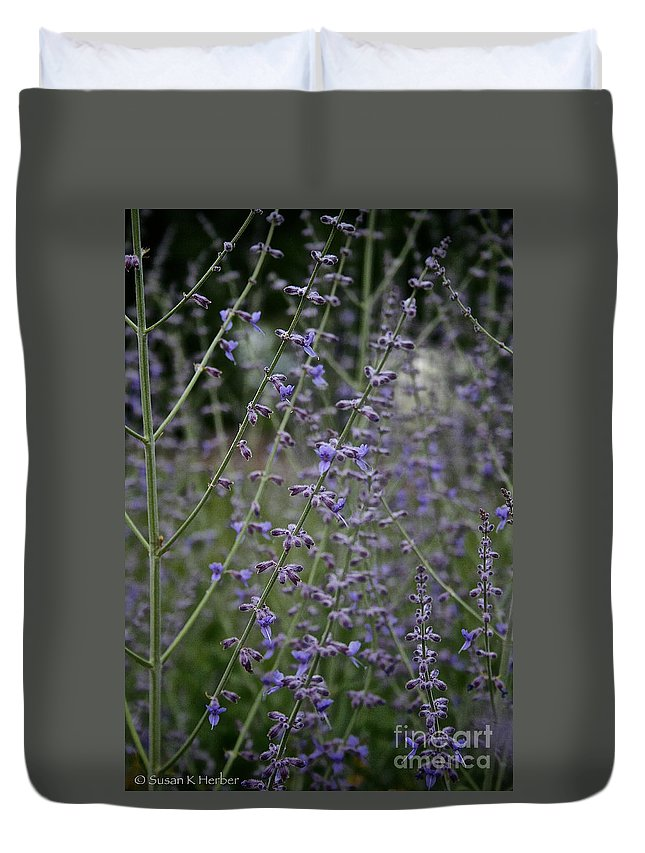 Outdoors Duvet Cover featuring the photograph Early Russian Sage by Susan Herber