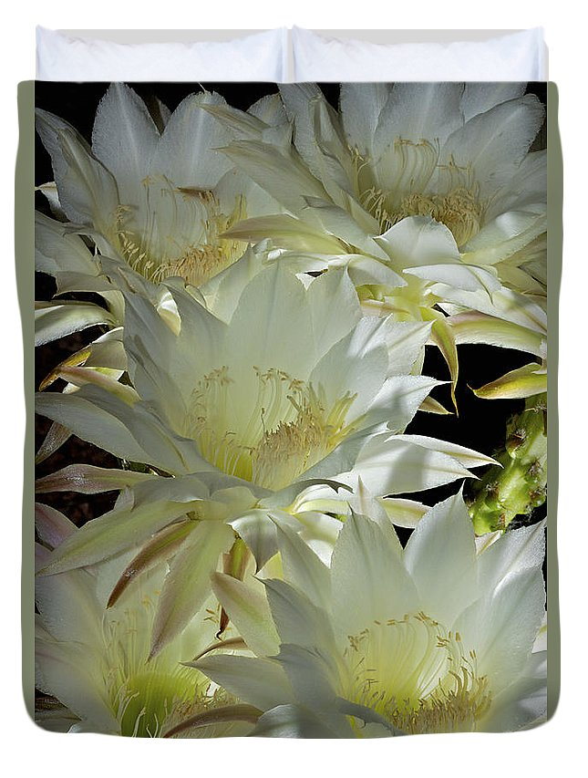 Flower Duvet Cover featuring the photograph Easter Lily Cactus Bouquet by Phyllis Denton