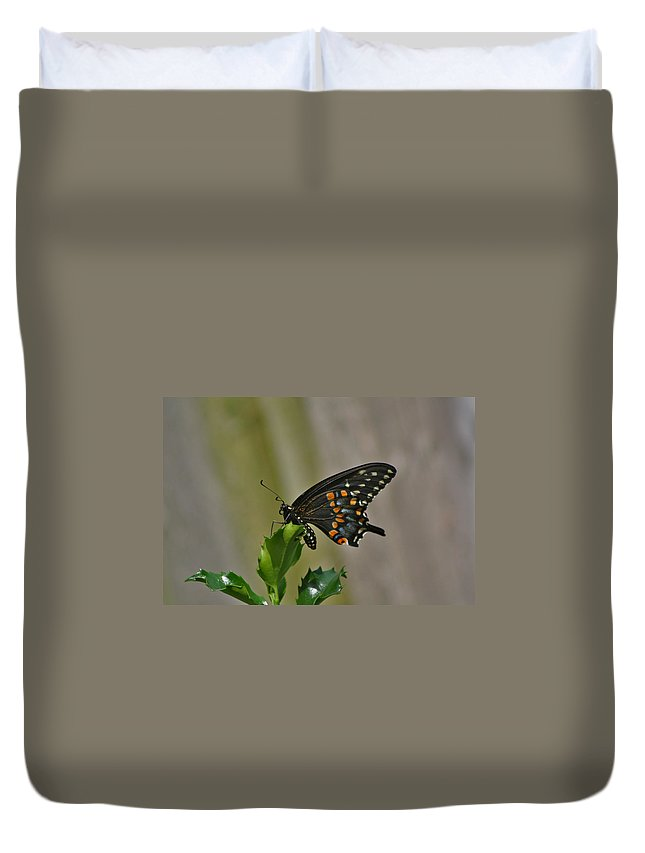 Butterfly Photographs Duvet Cover featuring the photograph Ebony Butterfly by Calvin Nelson