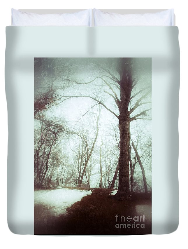 Rural Duvet Cover featuring the photograph Eerie Winter Woods by Jill Battaglia