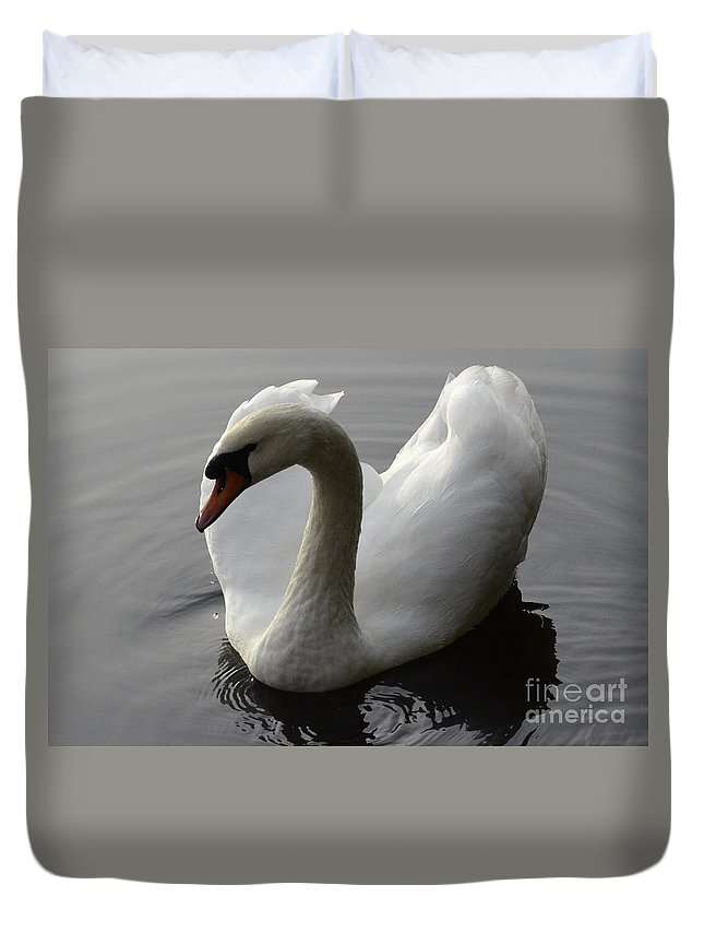 Swan Duvet Cover featuring the photograph Elegance by Bob Christopher
