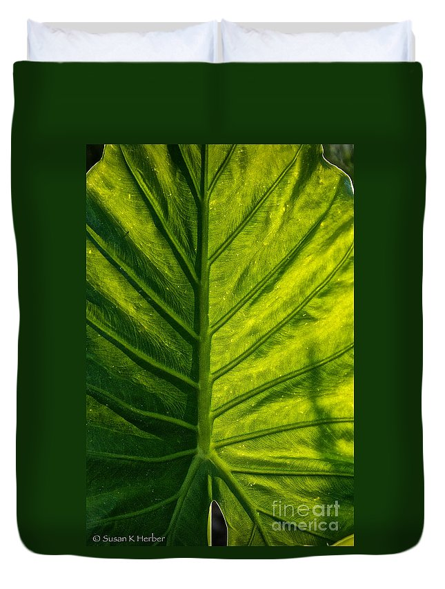 Outdoors Duvet Cover featuring the photograph Elephant Ear by Susan Herber