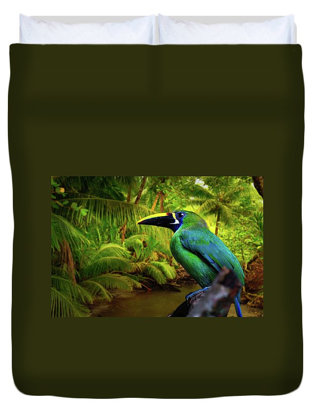 Toucan Photographs Duvet Cover featuring the photograph Emerald And Blue Toucan by Harry Spitz