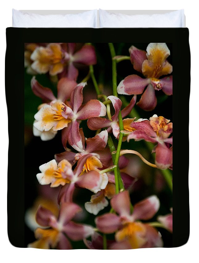 Flower Duvet Cover featuring the photograph Emma's Orchid by Trish Tritz