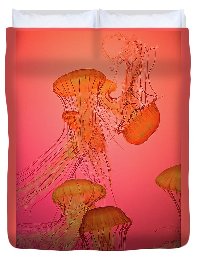Orange Duvet Cover featuring the photograph Enchanted Jellyfish 3 by Pam Fong