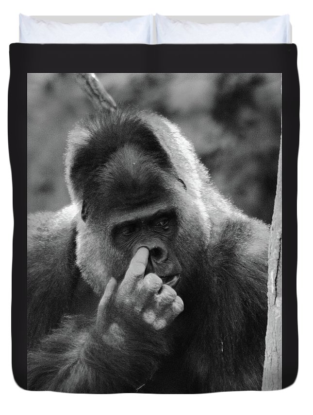 Gorilla Duvet Cover featuring the photograph Enjoy The Moment by Bruce J Robinson
