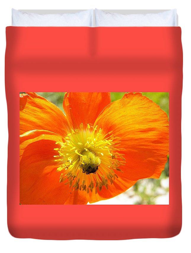Flower Duvet Cover featuring the photograph Enter The Orange Poppy by Corinne Elizabeth Cowherd