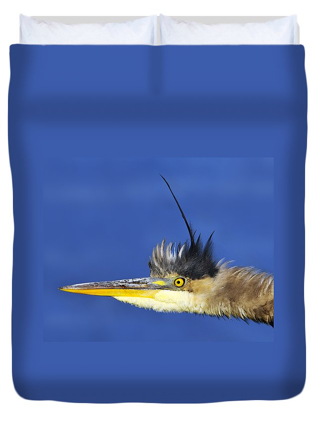 Ontario Duvet Cover featuring the photograph Erect by Tony Beck