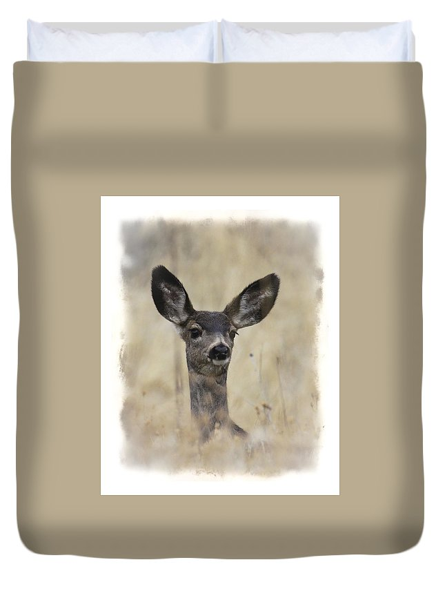 Mule Deer Duvet Cover featuring the photograph Faded Fawn by Steve McKinzie