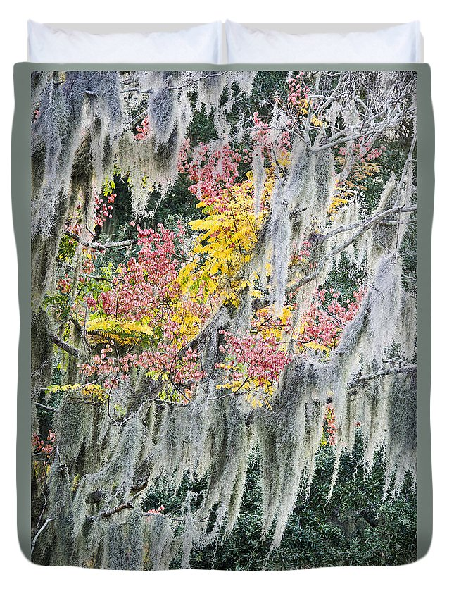 Air Plant Duvet Cover featuring the photograph Fall Colors In Spanish Moss by Carolyn Marshall