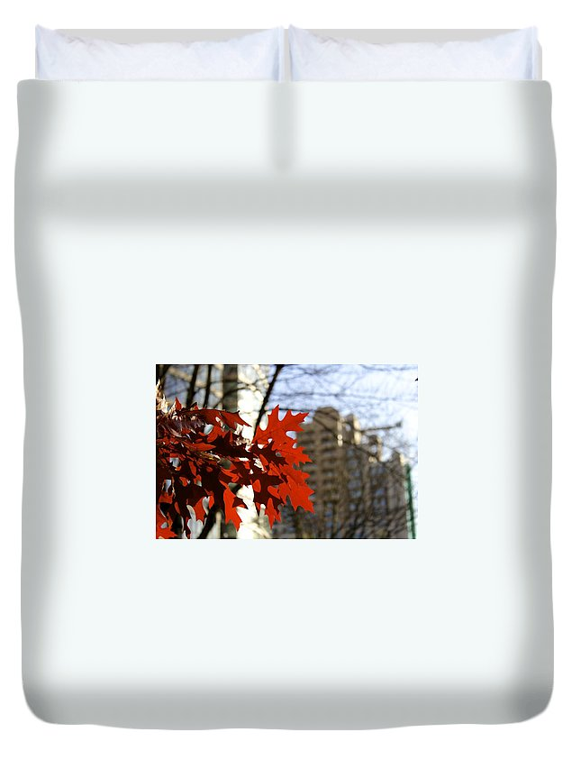 Leaves Duvet Cover featuring the photograph Fall In The City 2 by Alanna DPhoto