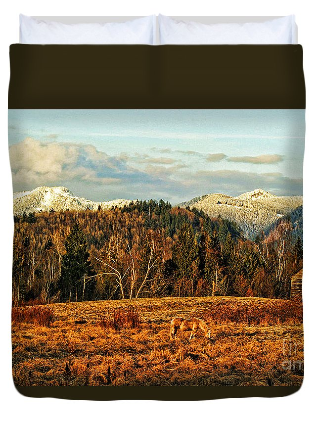 Barns Duvet Cover featuring the photograph Fall Landscape-hdr by Randy Harris